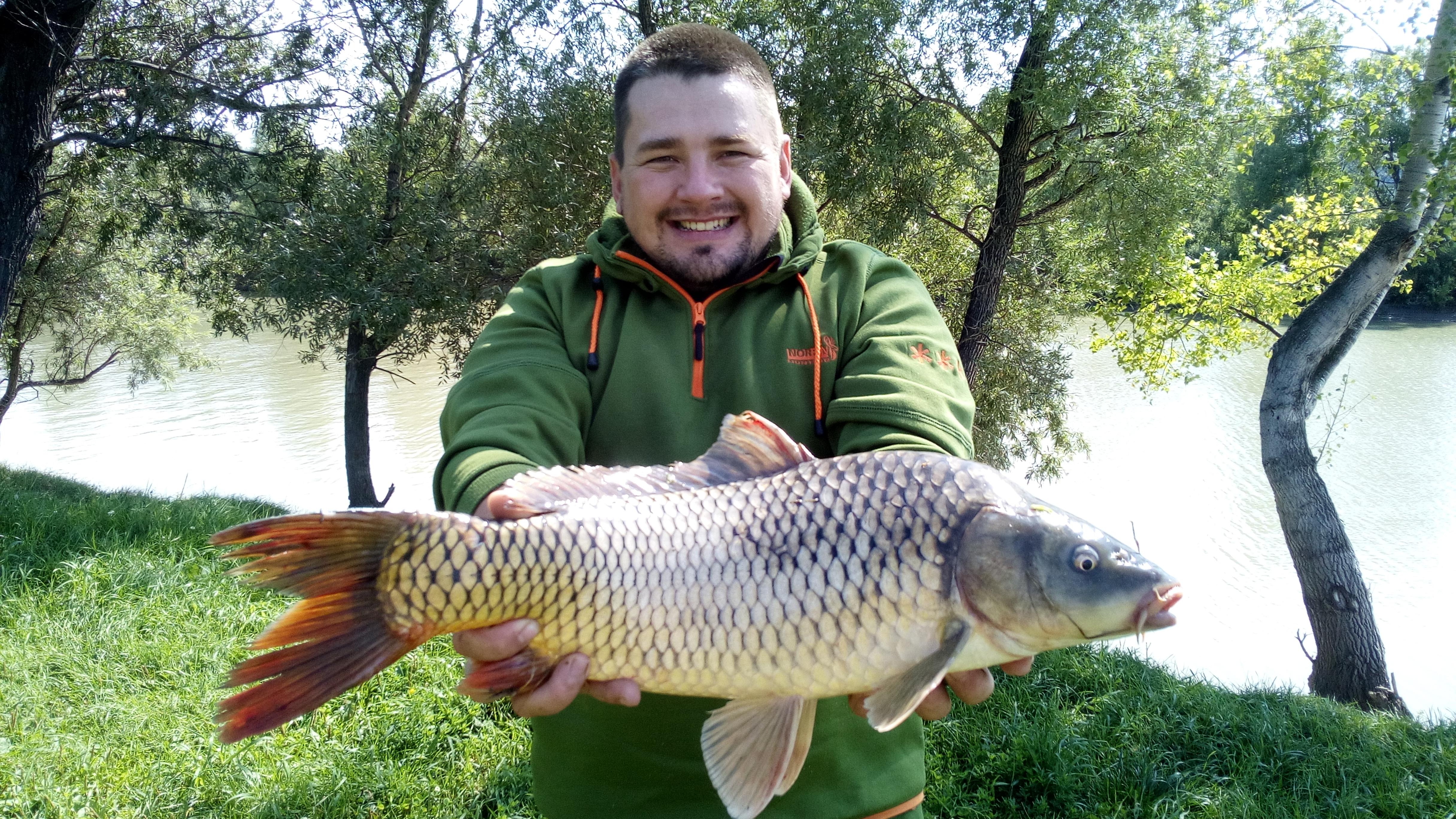 алтайский рыболовный клуб отчеты 2017
