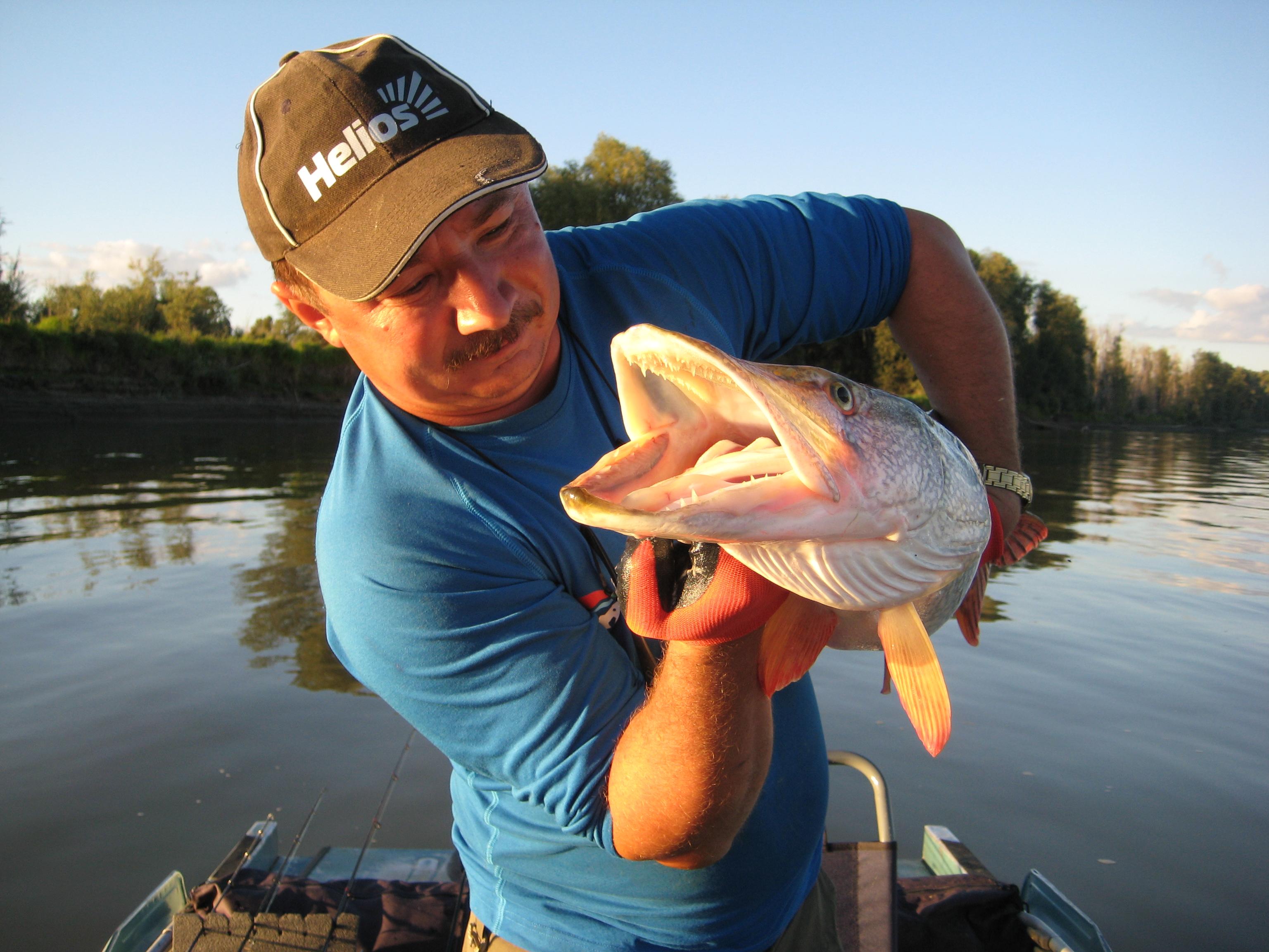 Рыбалка на Алтае: лучшие места и отзывы