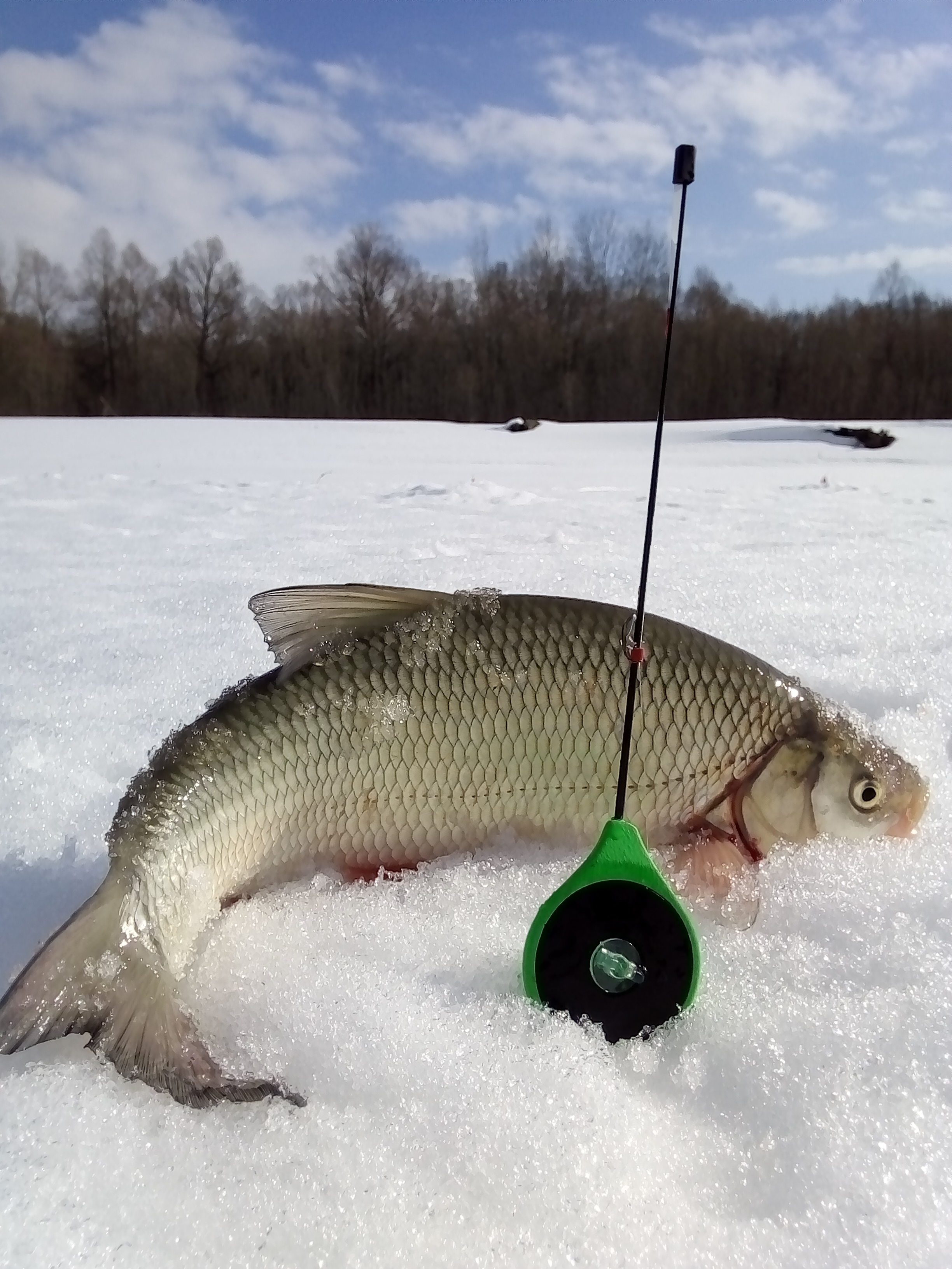 Лучшая рыбалка за эту зиму!!!