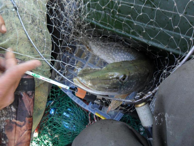 Рыбалка в отвес с лодки