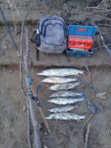 Итог утренней рыбалки
