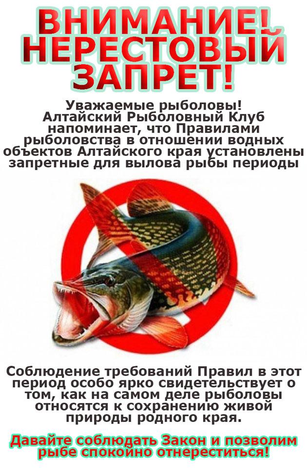 запрет на рыбную ловлю 2017 в москве