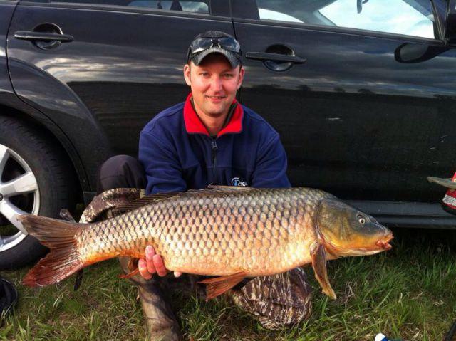 Сазан 8300 пойман на платном озере в мае 2015. На фидер.