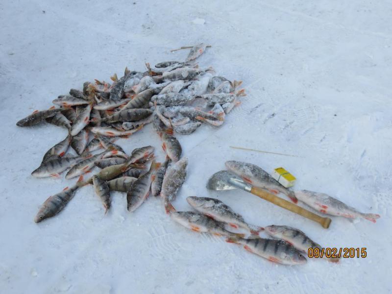 рыбалка 002.jpg