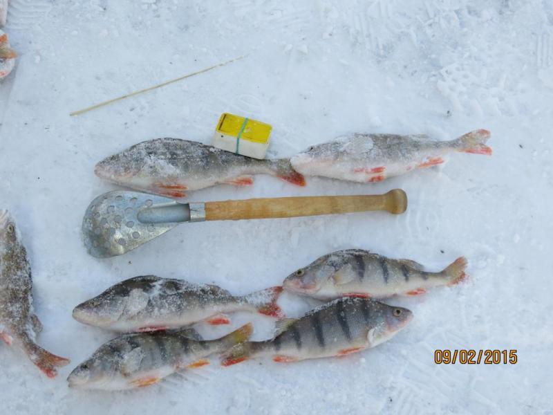 рыбалка 001.jpg