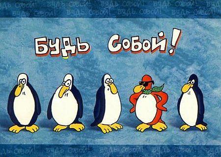 пингвин.jpg