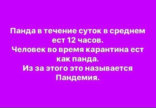 94120107_2660572647380887_276340265998876672_n.jpg