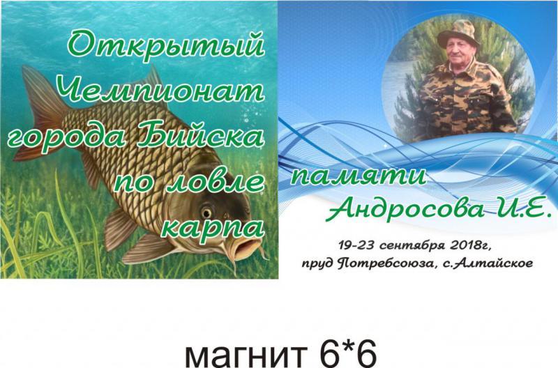 памяти Андросова И.Е -магнит.jpg