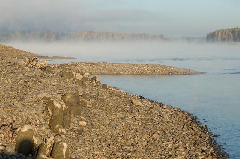 Прикрепленное изображение: туман.jpg
