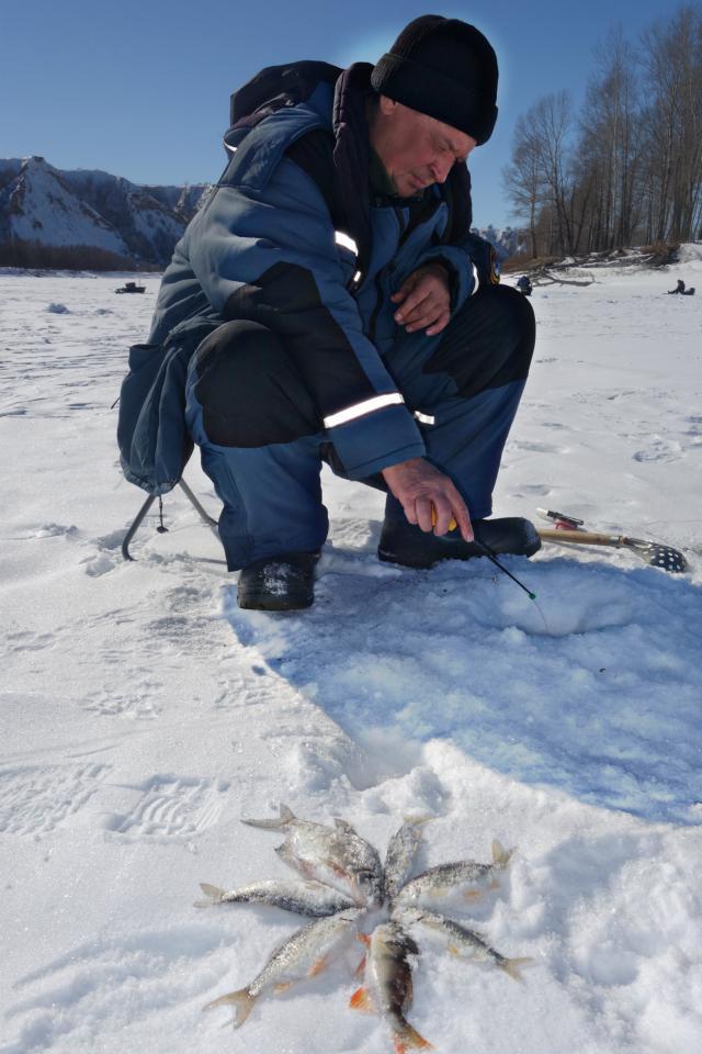 рыбалка на алтае сайт алтайских рыбаков отчеты о рыбалке