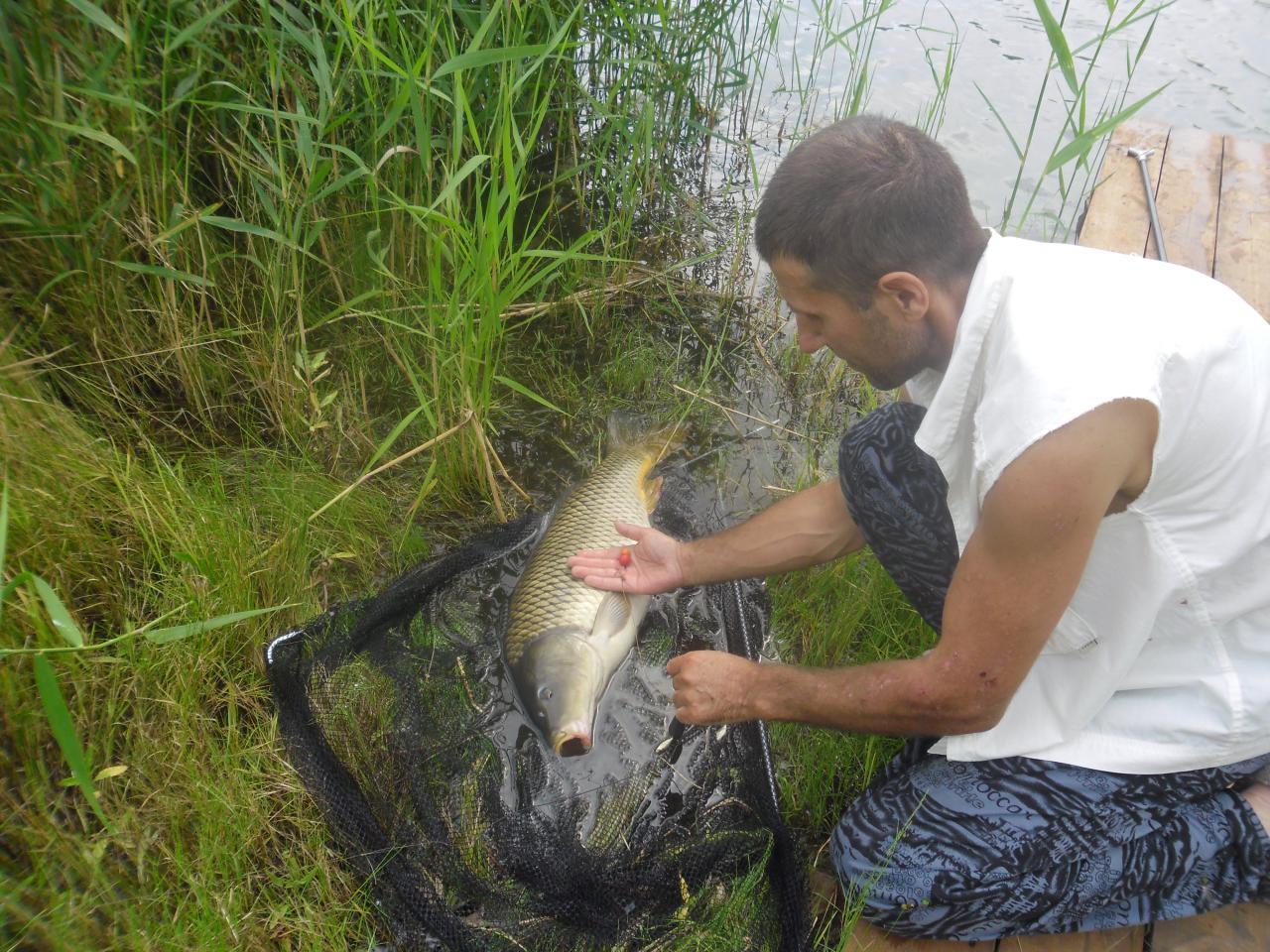 платник рыбацкая заимка