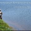 Чемпионат Алтайского края