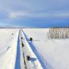 Зимние дороги Алтая